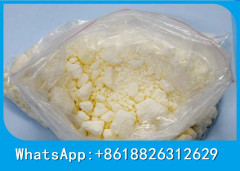 Local Anesthetic Powder Levobupivacaine Hydrochloride