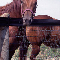 12.5 Gauge Safe fence mesh And Charming Field Fencing For Horses