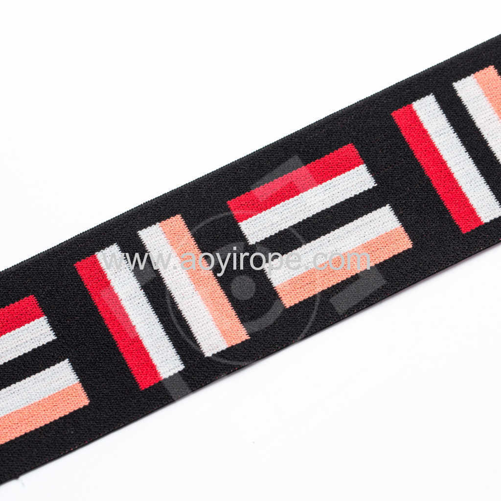 4cm Polyester Spandex Embroidered elastic band