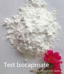 Anabolic Steroid Test Isocaproate Powder