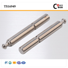 china suppliers non-standard customized design precision pivot shaft