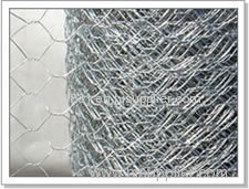 Hexagonal wire mesh WENTAI