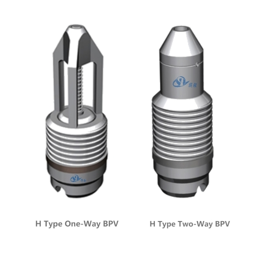 Cameron Type H One-Way & Two-Way Back Pressure Valve