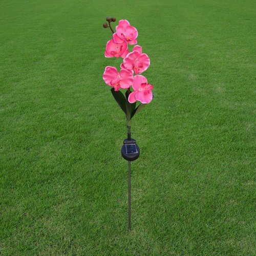 Solar Garden Light with Butterfly Orchid Outdoor Stake