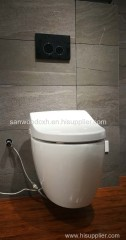 Wall Mounted One Piece Rimless Siphon automatic warm wash Intelligent Toilet