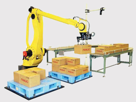 Cartoning and Palletizing Robot for Production Lines