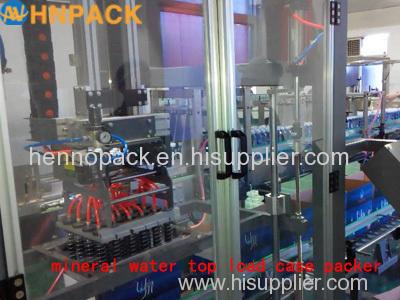 top load type case packer