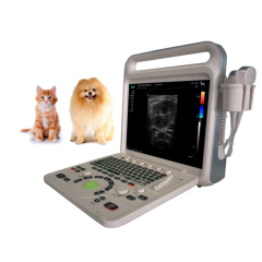 15 inch Portable Pregnancy 4D Color Doppler Ultrasound Machine For VET