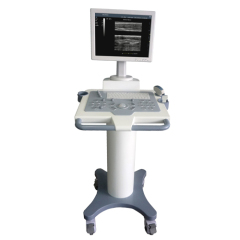 Trolley ARM platform full digital ultrasound diagnostic system
