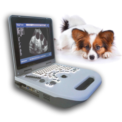 Veterinary Black white laptop ultrasound diagnostic equipment