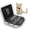 Pet laptop color doppler ultrasound diagnostic system