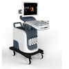 Real-time 4D imaging color ultrasonic diagnosis system