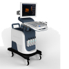 Trolley 3D color doppler ultrasound diagnostic equipment