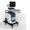 Trolley 3D color doppler ultrasound diagnostic equipment