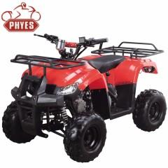 phyes 125cc quad atv with CE