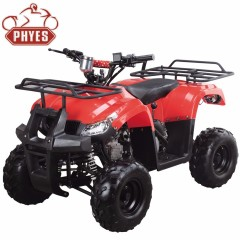 phyes atv 150cc engine with atv speedometer