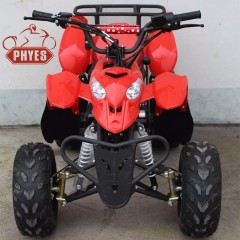 110cc chinese atv and 110cc atv seller