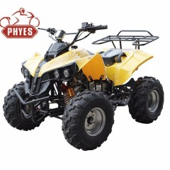 phyes Automatic Transmission Type and Gas / Diesel Fuel cheap 110cc atv quad