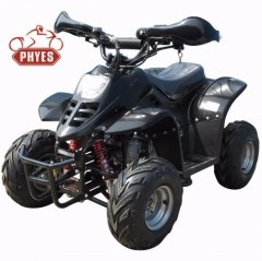 phyes Cheap 4 wheeler 4 Stroke 110CC Mini Quad ATV with CE
