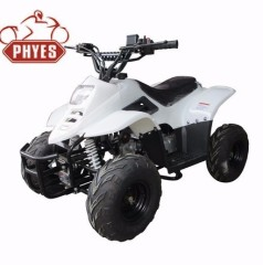 phyes motor atv mini quad atv 50cc 110cc 125cc china moke car for sale