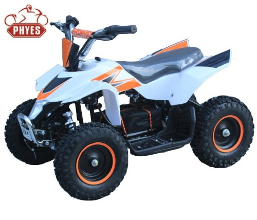 phyes atv bke electric 36v revers switch