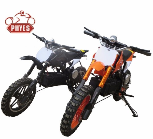 phyes Dirt Motos RACING 36v 800w bike electric