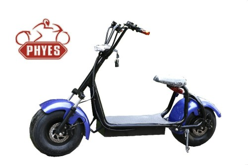 phyes electric scooter 1000w citycoco scooter
