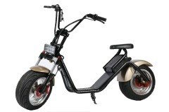 phyes city coco electric scooter motorcycle 1000w 60v