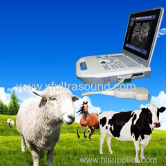 Full Digital Veterinary Portable Ultrasound