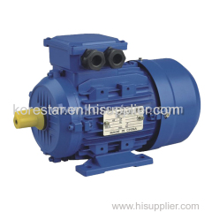 MS Series Three Phase Induction Motor