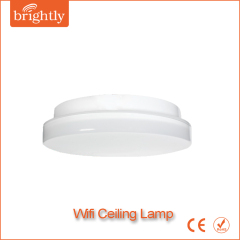 20W/24W Wifi smart Ceiling Lamps
