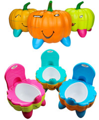 Potty Training Baby Toilet