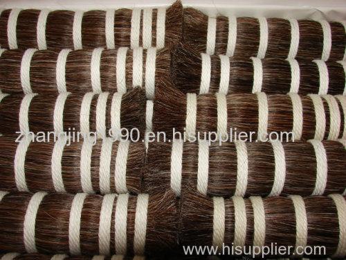 horse tail hair and horse mane hair