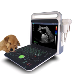 Pet or Veterinary Portable Full Digital Color Doppler Ultrasound Diagnostic System
