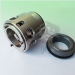 Repalce AES N-P0LXB Mechanical Seal. Replace Vulcan Type 822 Seal