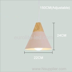 euroliteLED Pink Single-Head LED Chandelier Nordic Modern Simplicity Pendant Lamp Hanging Wire 150cm Freely Adjustable