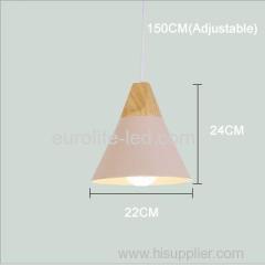 euroliteLED Pink Single-Head LED Chandelier Nordic Modern Simplicity Pendant Lamp Hanging Wire 150cm Freely Adjustable