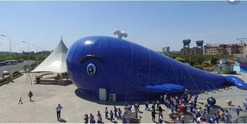 Inflatable whale island marine ball park