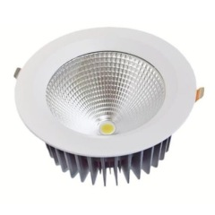 30W Cree COB LED downlights