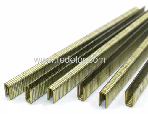 Medium Wire Staple series