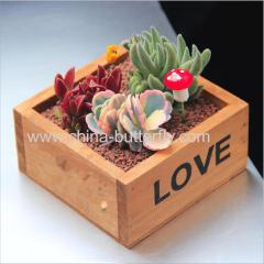 Square Succulent Wood Planter Box