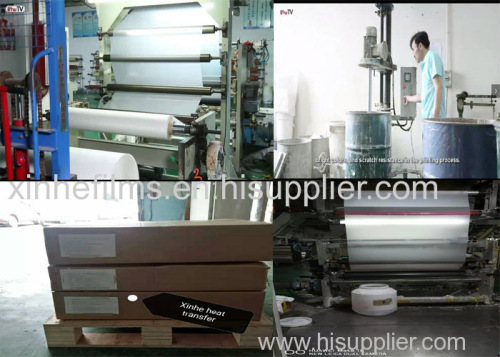 Cold/Hot Peel Glossy/Matte Heat Transfer Pet Film Sheet and Roll at Competitive Prices From Best China Factory Suppliers