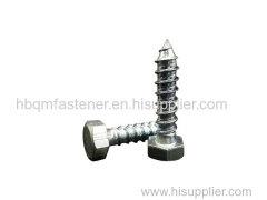 DIN571 M6 M12 Hex Head Wood Screw Fastener
