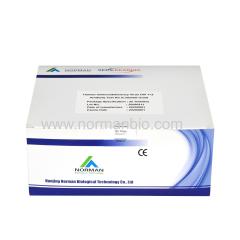 HIV antibody rapid test kit