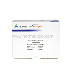 Dengue NS1 Antigen Testing Kit (Colloidal Gold)