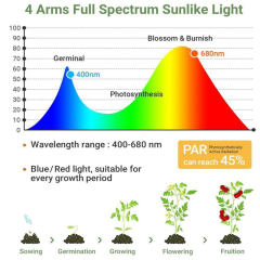 Full Spectrum Phytolamps DC 5V USB with Timer Desktop Clip Phyto Lamps for indoor Plants Flowers VEG seed