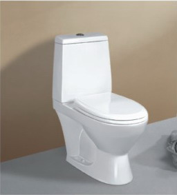 Washdown Separated Toilet
