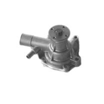 gas water pump