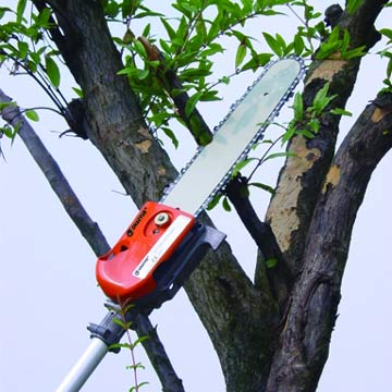 Long-reach Chain Saws