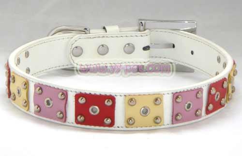dog collar/leash/cat tree / geniune leather